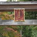 写真: 高麗神社