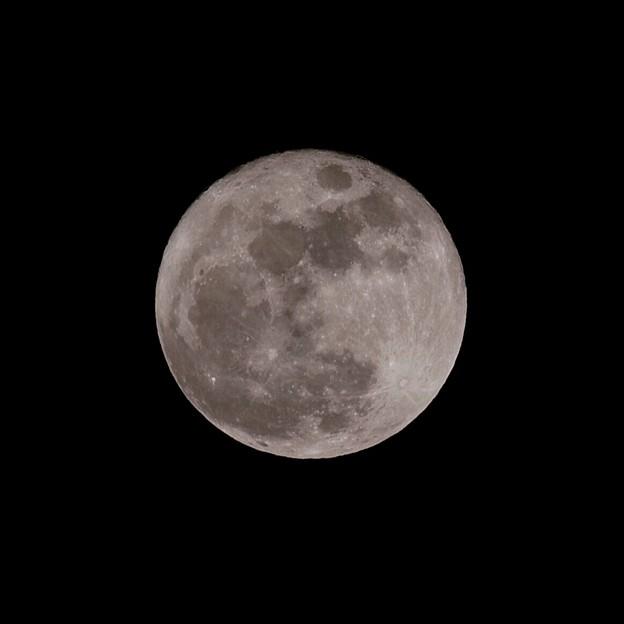 14日は満月でした。