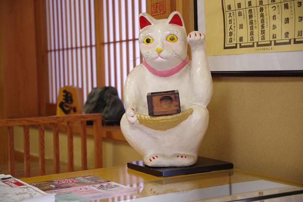 川越菓舗「道灌」の招き猫