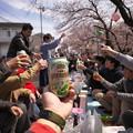 写真: お花見の乾杯!!