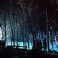 写真: 青い池*ライトアップ+