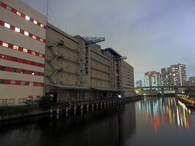 Canal side walk#2