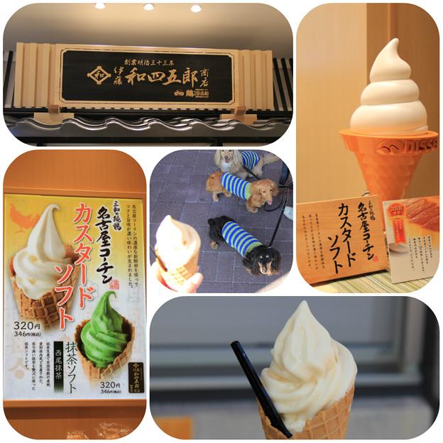Photos: 名古屋コーチンカスタードソフト