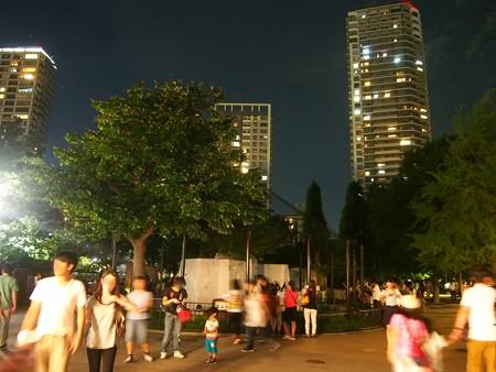 20140815 上野 夜のケープ達09