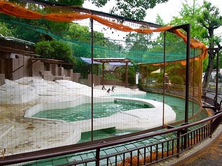 20110522 天王寺動物園04