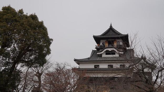 写真: DSC00376