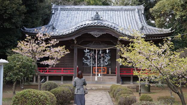 雰囲気の変わる神社にて