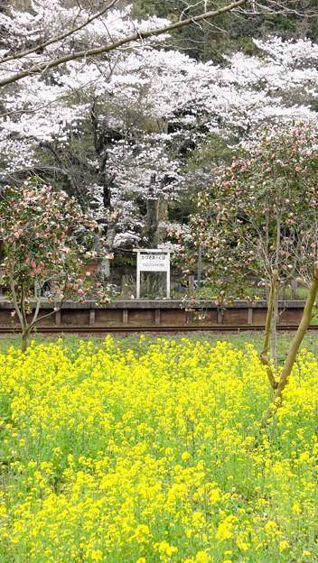 上総大久保駅 (小湊鉄道)