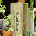 Photos: Natural-Garden