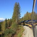 写真: 2126 アラスカ鉄道とデナリ山@アラスカ