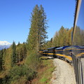 2126 アラスカ鉄道とデナリ山@アラスカ