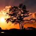 写真: 沈む夕日