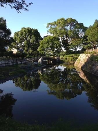 20140731 高槻城跡の池