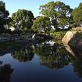 Photos: 20140731 高槻城跡の池