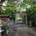 20160626 磐手杜神社
