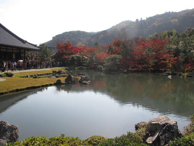 写真: 20161122 京都嵐山