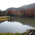 20161122 京都嵐山