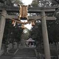 20170216 磐手杜神社