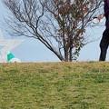 Photos: ジョギング