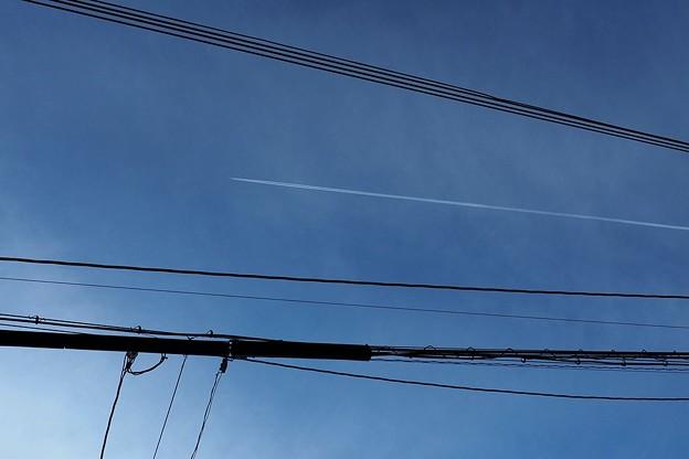 写真: 一直線