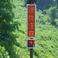 Photos: 気温43℃?
