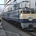 Photos: EF65 501+12系【臨時快速EL&SLみなかみ】