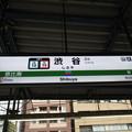 Photos: #JA10 渋谷駅 駅名標【埼京線・湘南新宿ライン 南行】