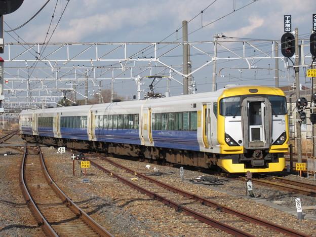 回送列車E257系500番台 NB-08編成