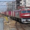 Photos: EH500-74+コキ