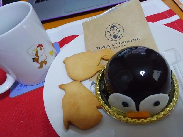20170205 長崎ペンギン水族館 25