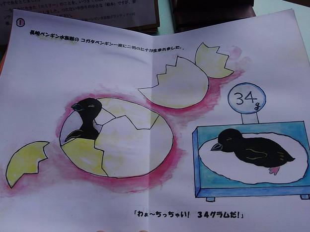 20170314 長崎ペンギン水族館 14