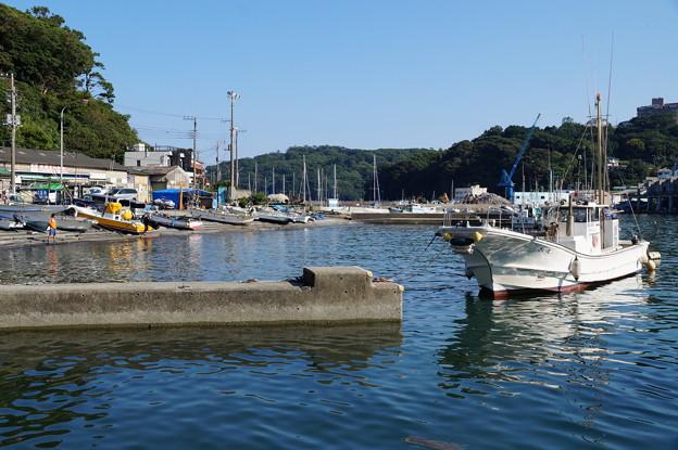 真鶴漁港 2