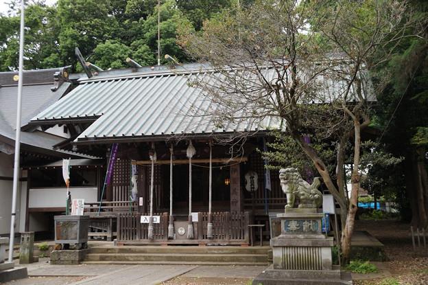 狛江 伊豆美神社