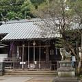 写真: 狛江 伊豆美神社