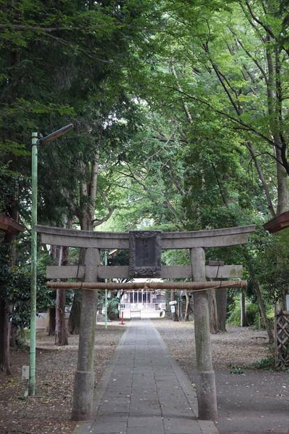 狛江 伊豆美神社 2