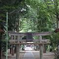 写真: 狛江 伊豆美神社 2