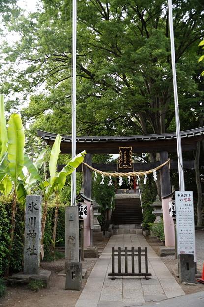 南沢氷川神社 2