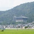 越前大仏 清大寺と田園風景