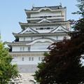 勝山城博物館