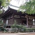 世田谷 奥沢神社