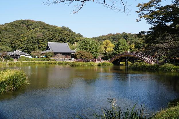 金沢 称名寺 3