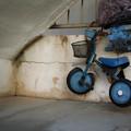 Photos: Wheelie