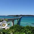 写真: 快晴の日の角島大橋   DSC00646