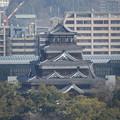 広島城   DSC00469