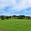 Photos: 波崎シーサイドキャンプ場061