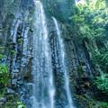 写真: 白糸の滝-3