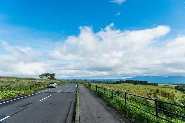 写真: 久住高原にて