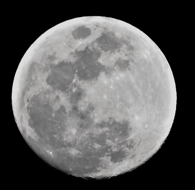 初春の月は--小望月「03-11」