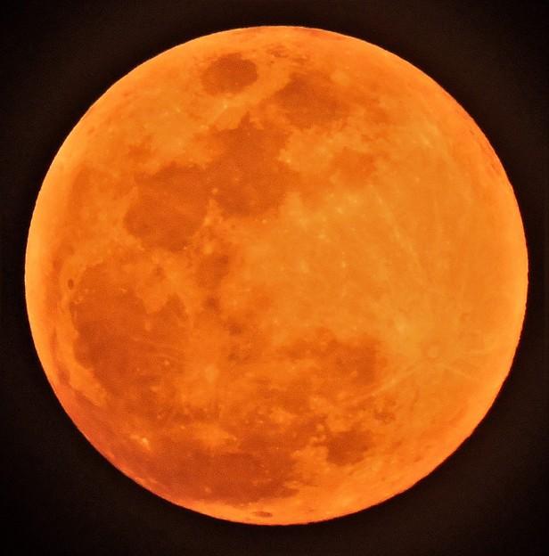 初春の月は--満月に「03-12」