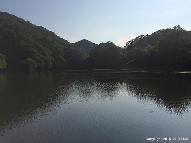 若山町ため池